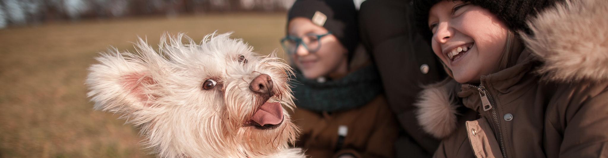 Úsměv psa - Rodinné focení